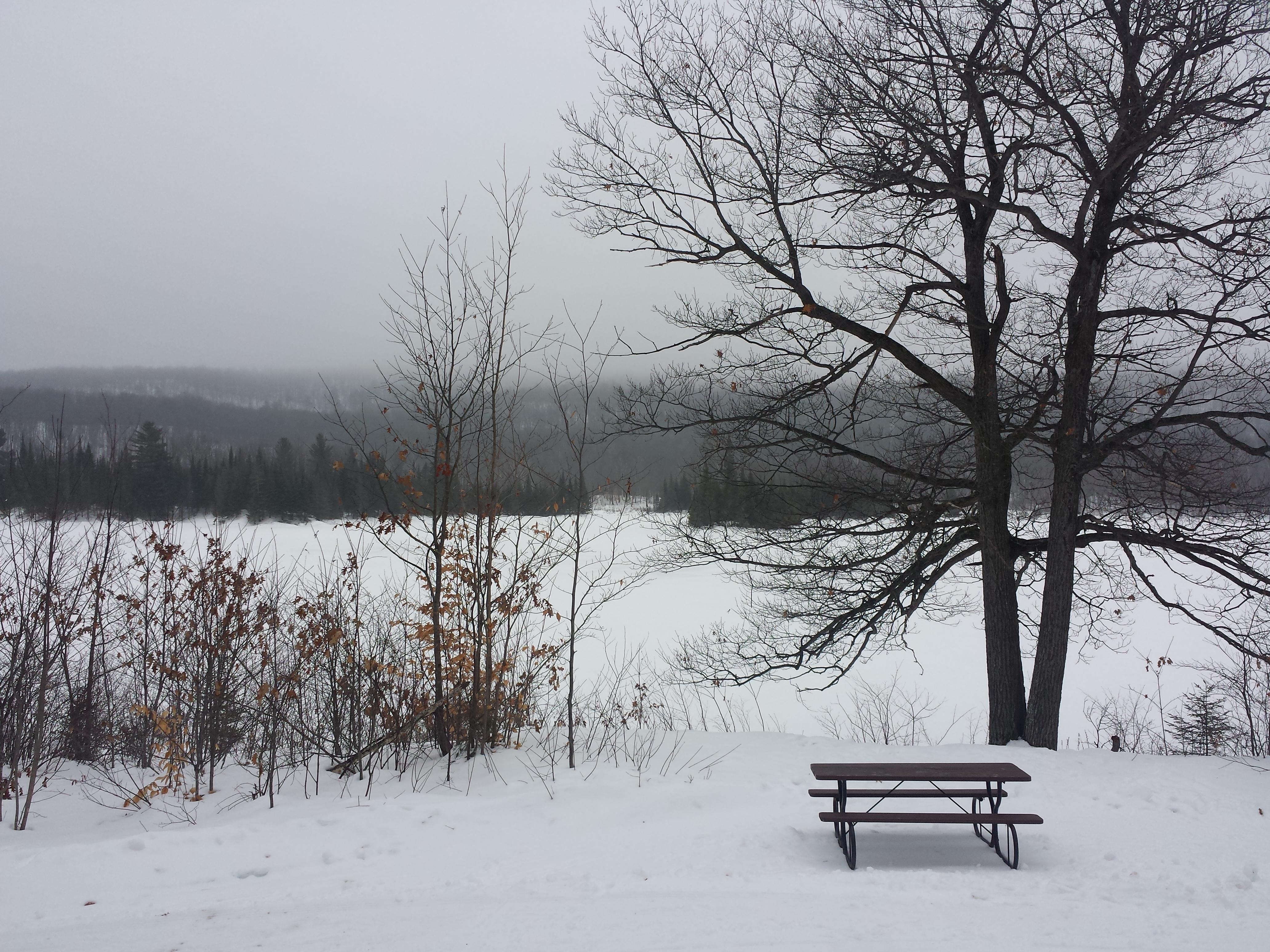 La vue imprenable sur le Lac Lusk!